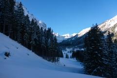 Vom Wirtshaus Bärenfalle gehts erstmal ein paar Kilometer auf nem Forstweg Richtung Ott-Mayr-Hütte