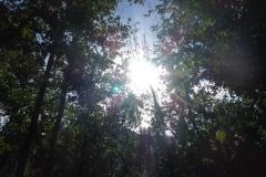 Nach dem Anreiseregen gestern ist das erste Ziel schonmal erreicht: Sonne
