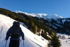Nach überqueren der Gleise zunächst über flache Almwiesen dahin bis in den Wald