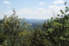 Blick auf Mont Real