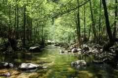 Über Stock, Stein und Fluss