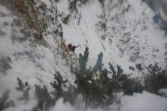 Nach dem Vorhang dann das am Jochberg oft unvermeidliche: kurz bester frozen turf, dann aber in nullkommanix der Latschenkampf. Nur 80 Höhenmeter aber die machen mich fertig:)