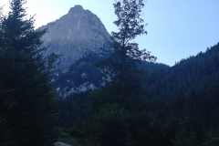 Der Zustieg auf dem Forstweg lohnt fast ein Bergrad. 30 Minuten sind es schon bis der Weg in einen Steig übergeht