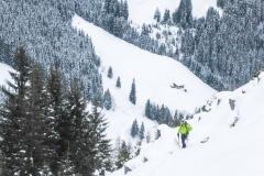 Alpbach (11 von 12)