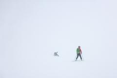 Bei der Abfahrt im Whiteout kommen Bergstemme und Kompass raus. Alle paar Meter fällt man einfach um...mir wird schlecht :)