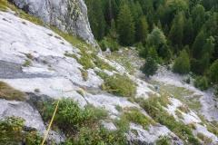 Wir landen am Leonhardtstein um Neulad zu erkunden. Na ja...bissl botanisch die Flora Bora